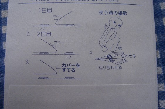 ぎょう虫検査.jpg