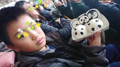 panda nikuman 201924.jpg
