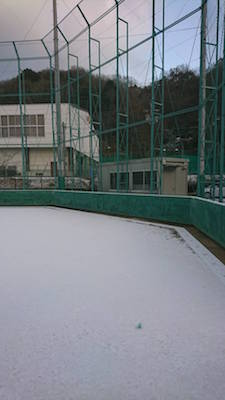 yuki taisei 20181.jpg